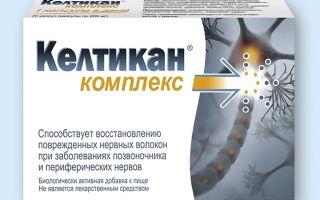 Келтикан: инструкция по применению, цена в аптеке и отзывы, заменители капсул и таблеток