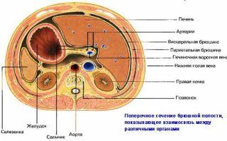 Боль в районе пупка: причины острых, резких болевых ощущений у женщин, мужчин
