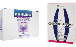 Панцеф: инструкция по применению, аналоги, цена и отзывы о цефалоспориновом антибиотике