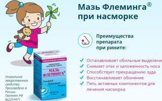 Мазь Флеминга: инструкция по применению, цена в аптеке и описание состава препарата