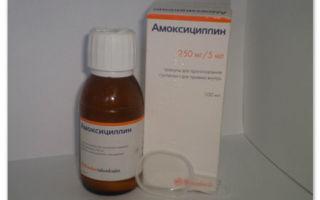 Флемоксин Солютаб для детей 250 мг: инструкция по применению, аналоги, цена и отзывы