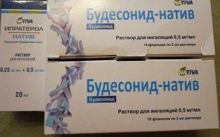 Будесонид: инструкция по применению, цена препарата для ингаляций, отзывы покупателей и аналоги
