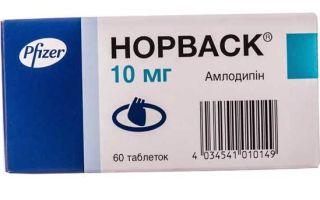 Норваск: инструкция по применению, цена в аптеке и форма выпуска препарата