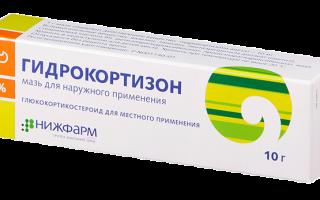 Гидрокортизоновая глазная мазь: инструкция по применению, цена в аптеке и отзывы, аналоги препарата