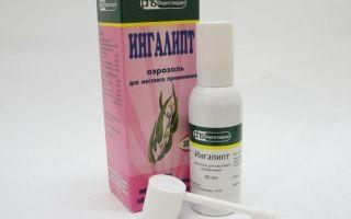 Ингалипт: инструкция по применению, описание эффективного спрея для горла