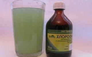 Хлорофиллипт спиртовой раствор: инструкция по применению, аналоги, цена и отзывы