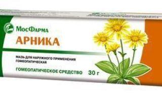 Арника мазь: инструкция по применению, цена в аптеке и аналоги гомеопатического препарата