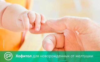 Хофитол раствор и сироп: инструкция по применению для детей и взрослых, аналоги, цена и отзывы о препарате