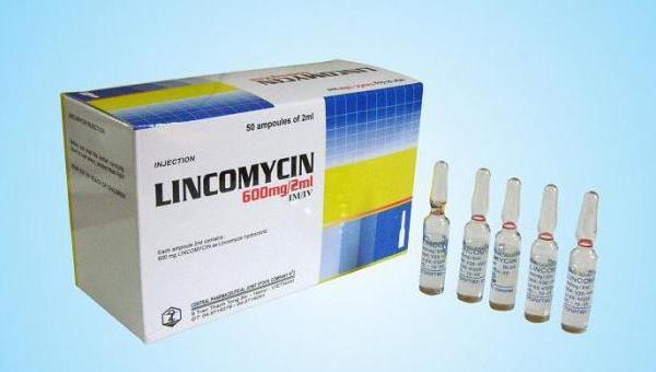 Линкомицин: инструкция по применению, цена, отзывы, аналоги антибиотика в капсулах Линкомицин
