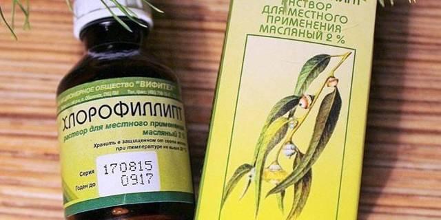 Хлорофиллипт раствор масляный: инструкция по применению в гинекологии, цена, отзывы, аналоги