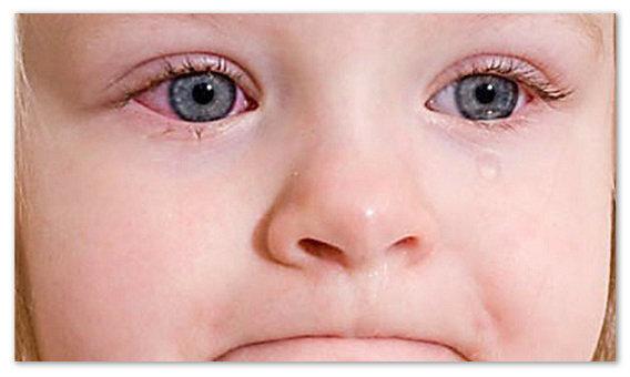 Пантогам сироп для детей: инструкция по применению, цена, отзывы
