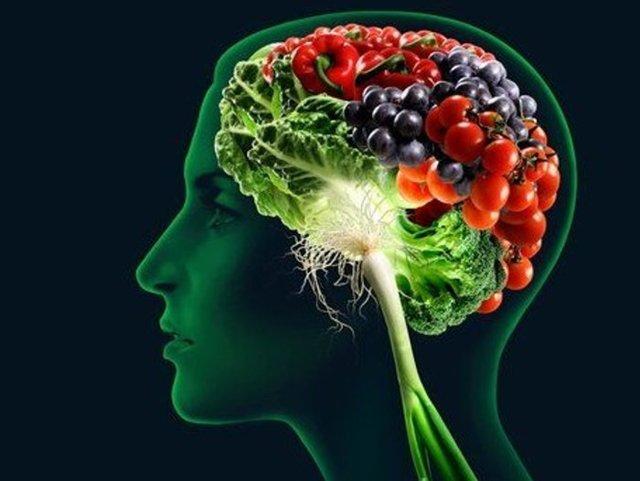 Эффективные препараты для улучшения памяти и работы мозга взрослым и детям