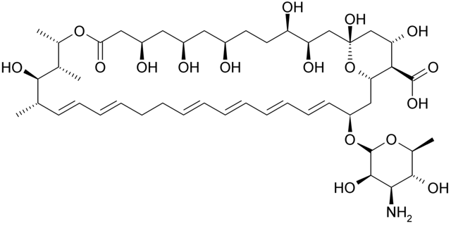Нистатин свечи: инструкция по применению, цена, отзывы, аналоги