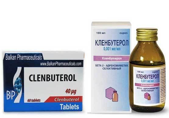 Кленбутерол: инструкция по применению, цена, отзывы, аналоги таблеток Кленбутерол