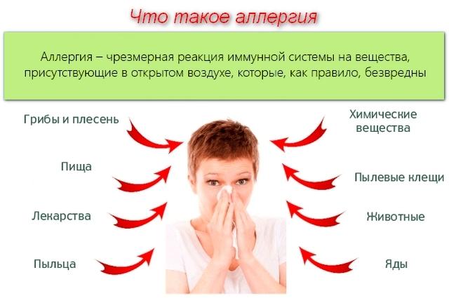 Аллергия - симптомы, лечение, причины, первая помощь