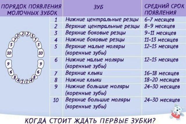 Прорезывание зубов у детей: симптомы, порядок и сроки в таблице, последовательность