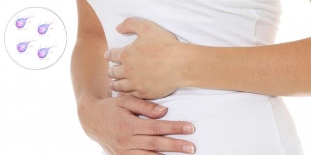 Лямблиоз: фото, симптомы, лечение. Как лечить лямблиоз