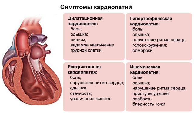 Телзап 40 мг - инструкция по применению, цена, отзывы, аналоги