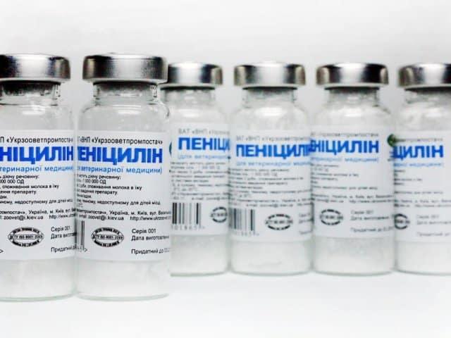 Третичный сифилис: признаки, лечение третичного периода сифилиса