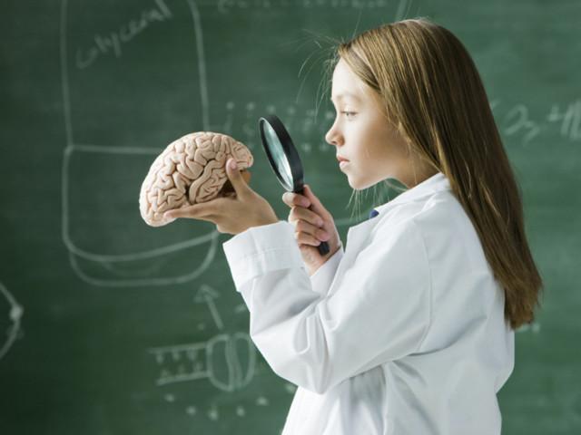 Препараты улучшающие мозговую деятельность и память