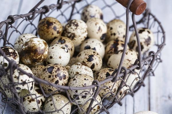 Аллергия на яйца: симптомы, лечение аллергии на куриные, перепелиные яйца у ребенка