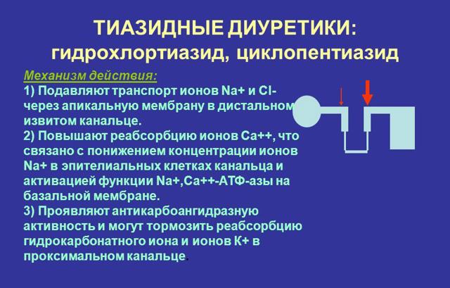 Триампур композитум: инструкция по применению, цена, отзывы, аналоги