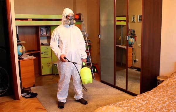 Как избавиться от тараканов в доме?