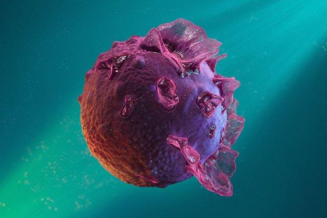 Вирус Эпштейн-Барр - симптомы, лечение у взрослых