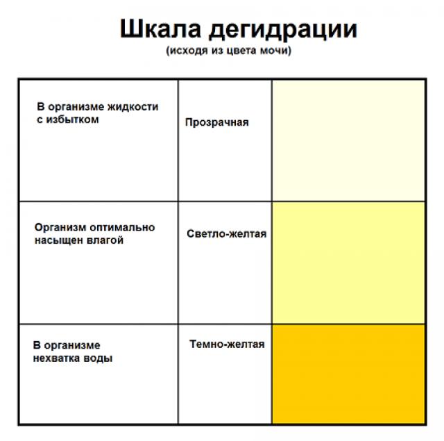 Общий анализ мочи норма и расшифровка результатов таблица у взрослых